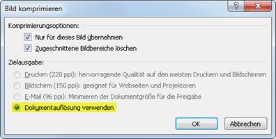 Office 2010: Nur eine Auflösung steht zur Verfügung