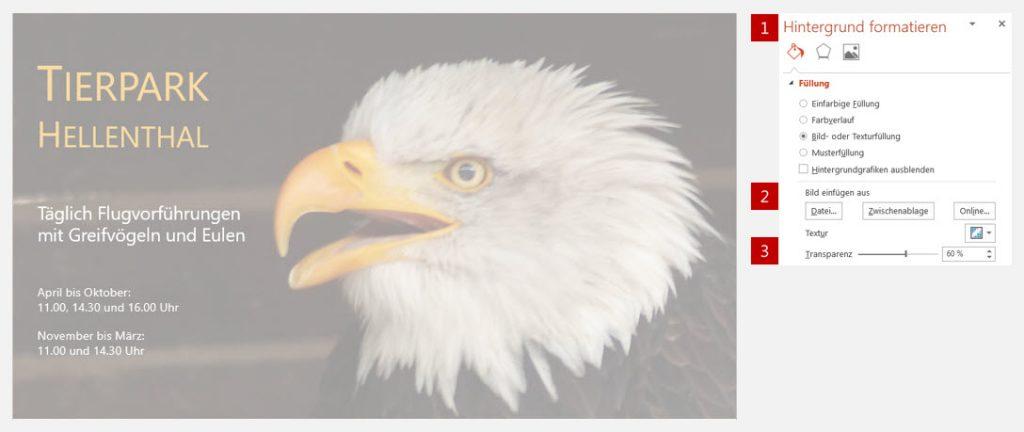 Bild mit Transparenz - Greiffvogel